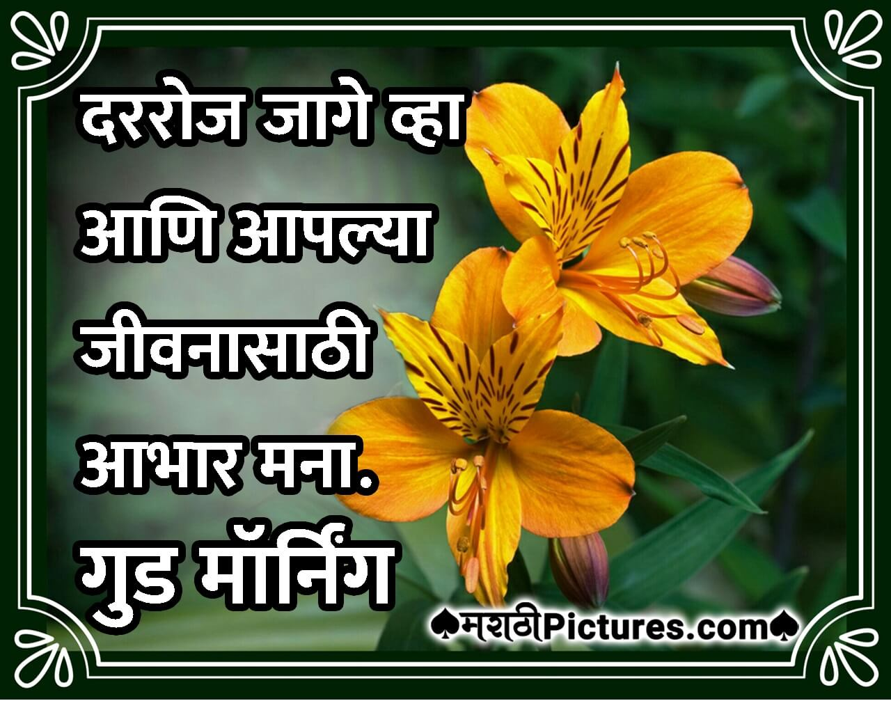 Free Printable Good Morning God Images In Marathi Hd Greetings Images